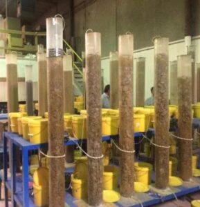 Example Column Testing
